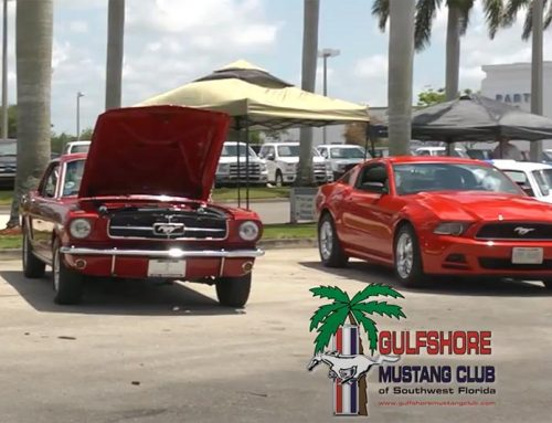 The Mustang 51st Birthday Show 2015