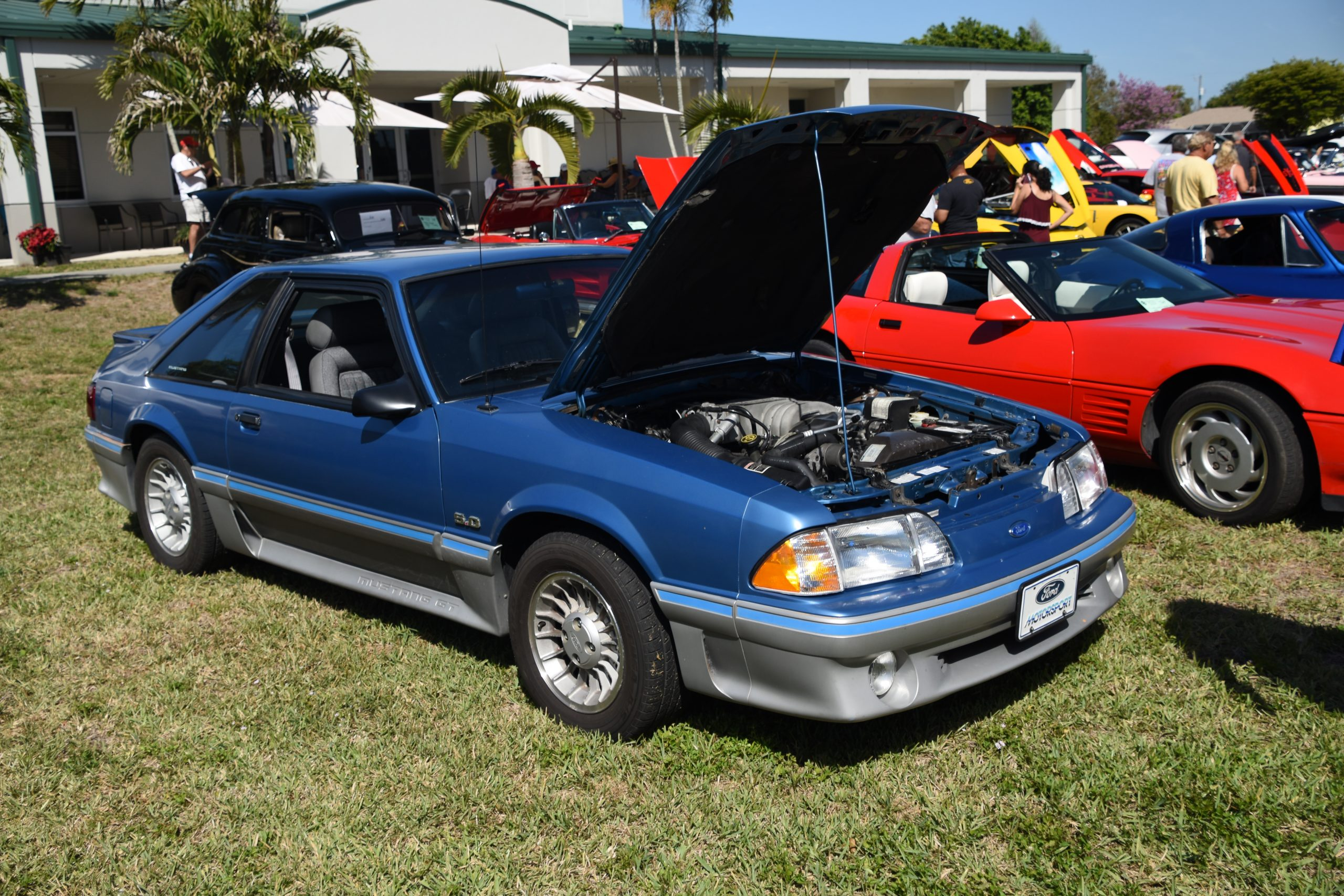 Blue 1988 Mustang GT with hood up