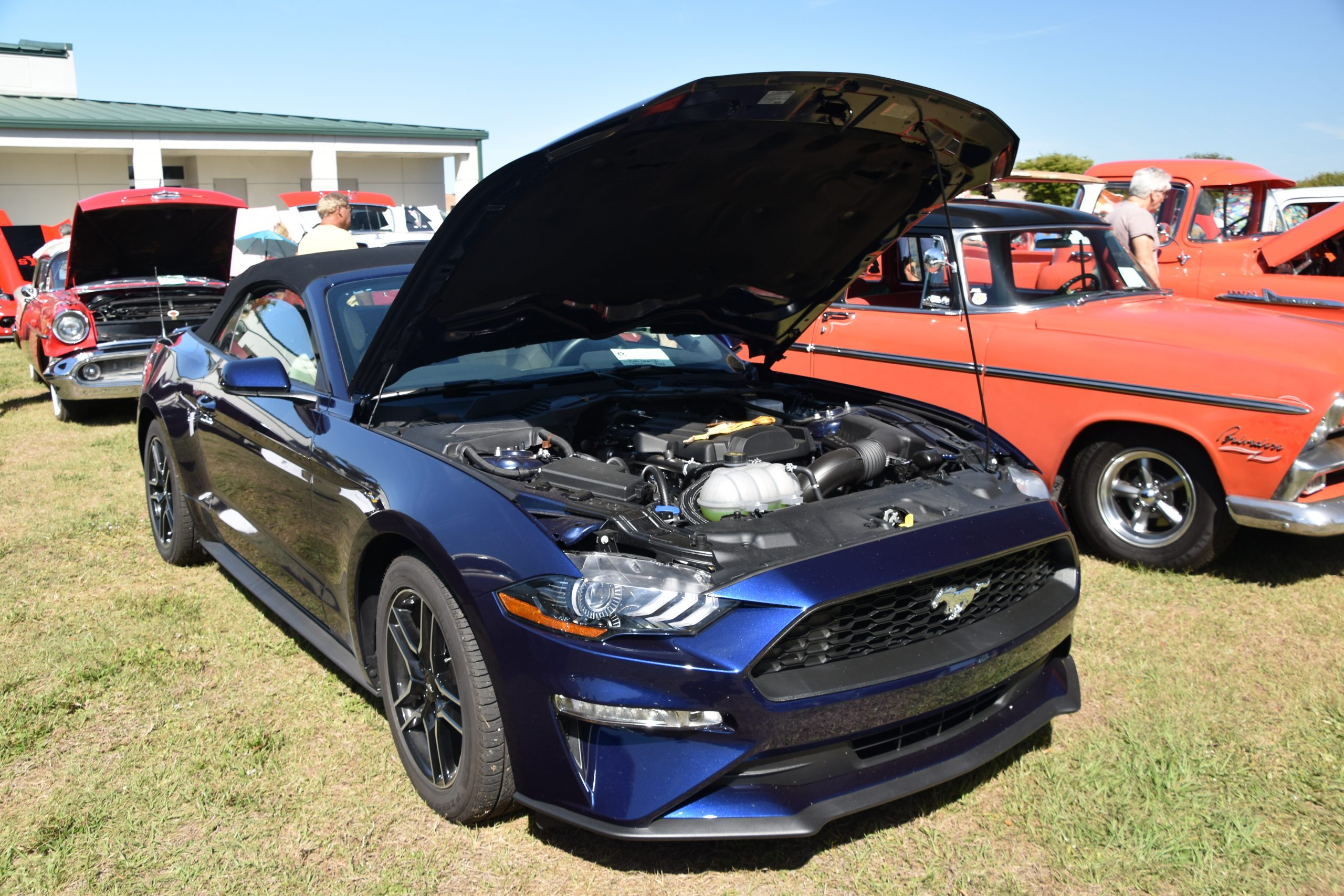 Blue Mustang convertible with hood up