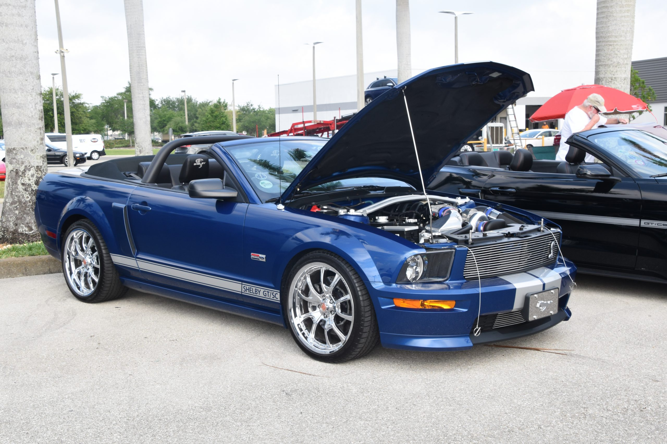 Blue Shelby Musgang with hood up at Car show
