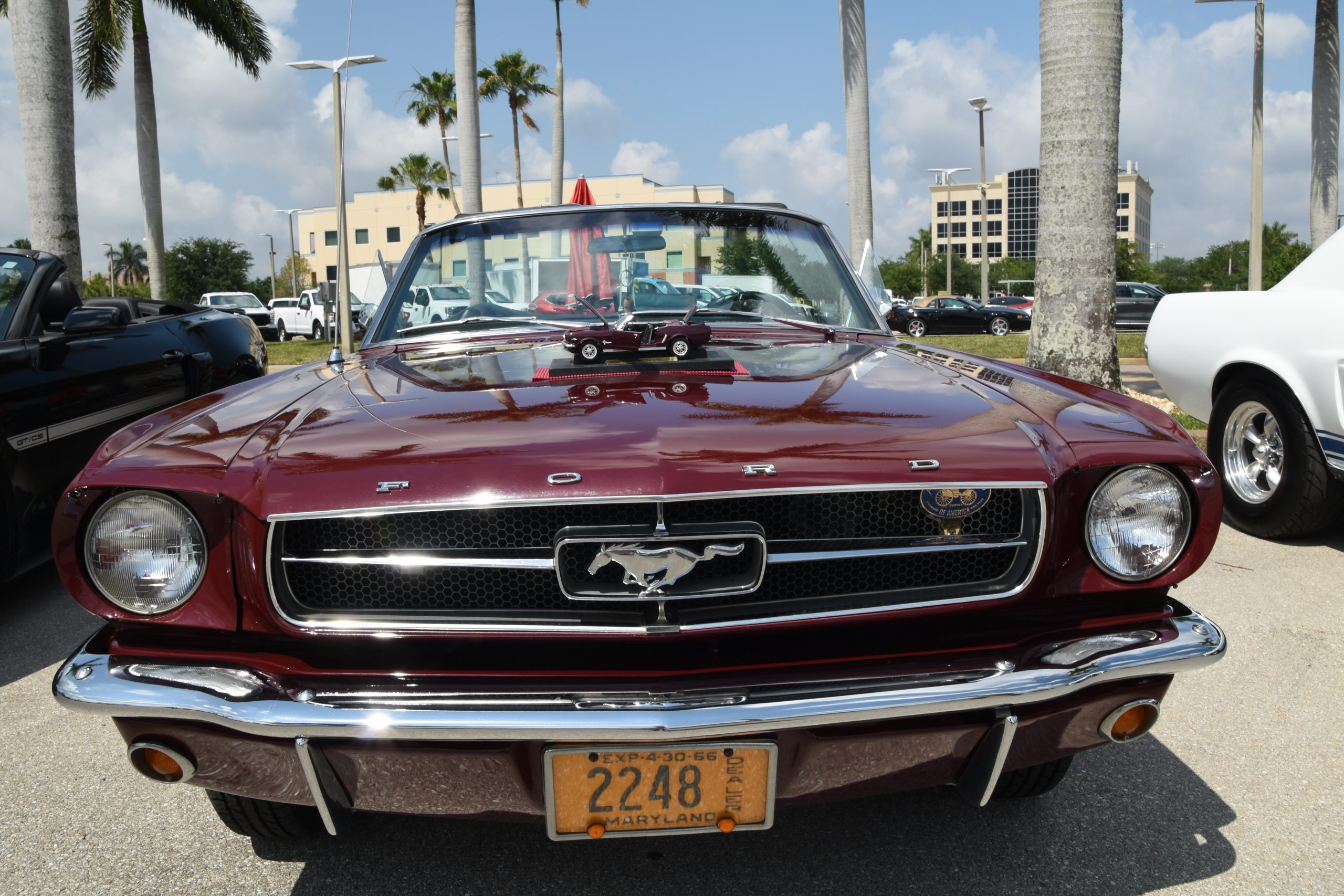 front of a mustang with modelcar on hood