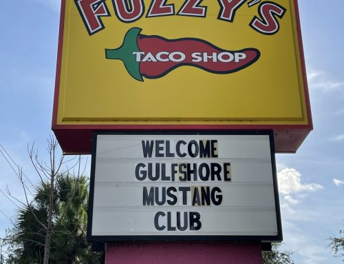 July's 5th Friday at Fuzzy's